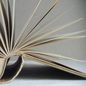 écrire un premier livre