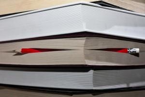 plan pour un livre réussi