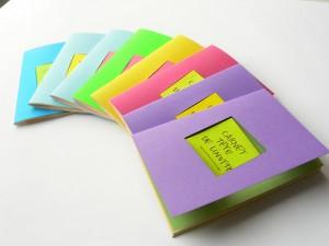 Un carnet pour écrire des idées de roman